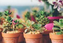 botanical / Webで集めた素敵な写真