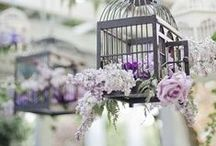 Wedding - General decoration inspiration