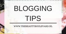 Blogging tips / Are you looking for blogging tips for Wordpress, for blogger, for beginners or for professionals? Then this is the right place to be! Check out these awesome tips and tricks. You will grow your blog for sure. This board contains a lot ideas & tools to grow your blog and business!