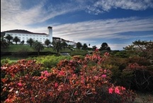 Must-stay golf resorts / This board contains the world's best golf resorts, whether ultra-luxurious, great value for money or something special