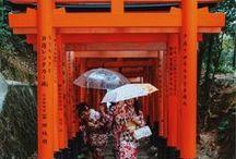 Nihon / Pure Japan.