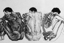 Anatomy / by Rania Jishi