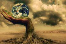 Environment & Nature / Environment & Nature / by JanetK04