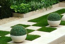 Garden / by Ni Evani