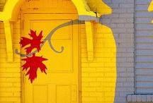 Door, Gate & Window / by Ni Evani