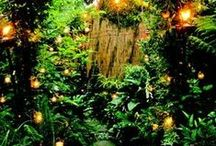 Love of Magical Gardens / A a young girl I always would go next door to where the most magical garden lay