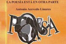 ENSAYOS &  POESIA / Artículos, ensayos literarios, filosóficos y poesía.