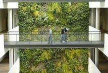 Groene muur | Inspiratie