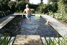 Zwemvijver inspiratie