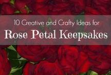 Rose Petal Ideas / A collection of ideas for what to do with fresh, dried or pressed rose petals as a keepsake, memento or craft. / by Kenarry: Ideas for the Home