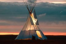 Tepees, Treehouses & Camping