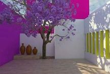 Colors and flowers / Colors, flowers, interior design. Beautify with flowers and colors. Arredare con i colori e con i fiori.