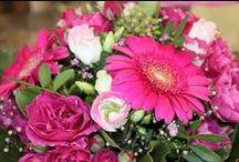 Blumensträuße / Tolle Blumensträuße verzaubern und schenken Freude!