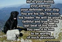 Dog Quotes / Quotes about our best friend the dog