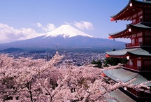 Japan / by trippiece