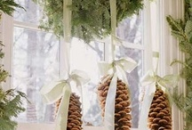 My Pinecone Obsession