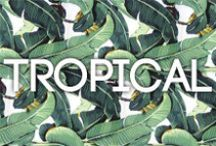 TREND Tropical / Tropical prints are going to be huge this season, here's our inspiration board. http://www.bangandstrike.com
