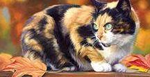 ARTIST - Bilodeau, Lucie / Lovely cats
