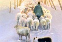 ART - Sheep, shepherd