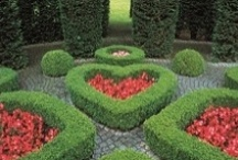 Beautiful Gardens  ✿⊱╮ / by ✿⊱Tricia ♥·:*¨¨*:·♥ Wood ✿⊱