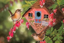✿⊱╮Bird Houses ✿⊱╮ / by ✿⊱Tricia ·:*¨¨*:·♥ Wood ✿⊱   ¸¸.•*¨*•♥ ♥