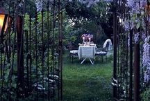 garden / Gardening tips, decor, and plans/ideas