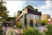 Green roofs / by Be Echo