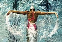 ~SWIM~ / Just keep swimming