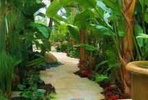 HOME: LANDSCAPING / by Christine Handson