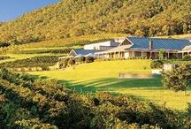 Distilleries/ Wine & Wineries