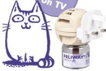 FELIWAY! The tool to de-stress your cat!