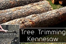 Tree Trimming / by Timberline and Landscaping