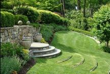 A sunny garden