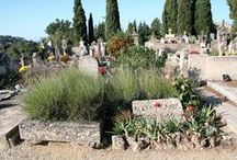 grave sites and tombstones