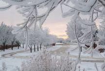 sníh a led