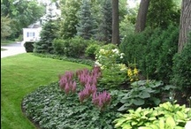 Landscape and Outdoor Space