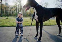 Why kids need pets
