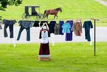 Amidst the Amish