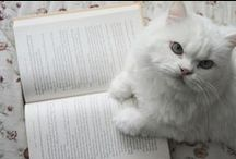 ♥books and cats♥