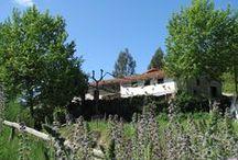 ♥ Quinta d'Alijo - campismo rural Portugal / Kleinschalige familie-camping in het Noorden van Portugal.