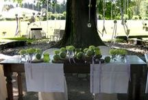 Celebrate the marriage under the oak / Un matrimonio estivo sotto la quercia centenaria