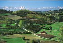 Italia - Benvenuti al Nord - Ovest / In questa bacheca troverete immagini relative alla Liguria, Lombardia, Piemonte e Valle d'Aosta, che sono le regioni della splendida Italia Nord occidentale. / by civetta delle nevi