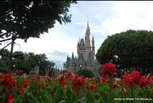 Disney Photography / Our best shots of Disney Destinations. Walt Disney World, Disney Cruise Line, Disney Resorts.