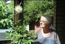 Puutarha- unelmia ja ideoita