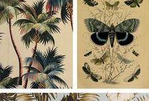 patterns & color