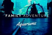Family Travel Destinations / Family Travel destinations | Travel with Kids | Zoos | Aquariums | Museums | Travel the USA