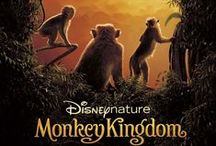 Disney Movies, Music & TV / Disney movies, music, shows and experiences you can share with the whole family.