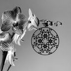 floralornament jewellery