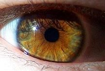 Eyes the window for the soul... / Eyes hazel , 183 cm taller , body shape average male Goddess Virgo1972/09/04 Soul heaven all details about the body... Very more sacred. Hazel heaven. Brown heavy. Green and blue shadows!!! Thanks