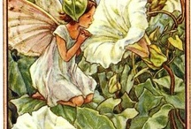 Fairies;  Flower fairies / by Heleen Lapperre